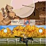 Paarden springtraining in my horse and me nintendo DS game