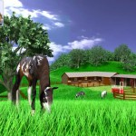 A Virtual Horse - Paardenspel