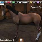 My Horse, een paardenspel in de app store