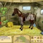 My horse farm - Paardenspel
