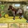 My horse farm - Paardenspel
